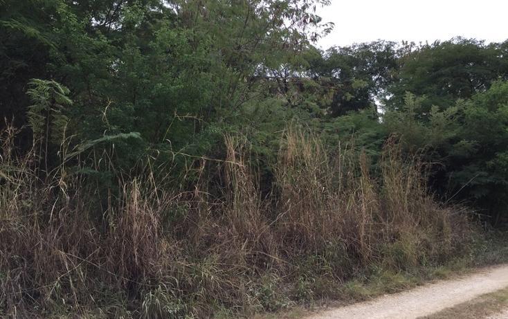 Foto de terreno habitacional en venta en  , campestre arenal, tuxtla gutiérrez, chiapas, 1636224 No. 05