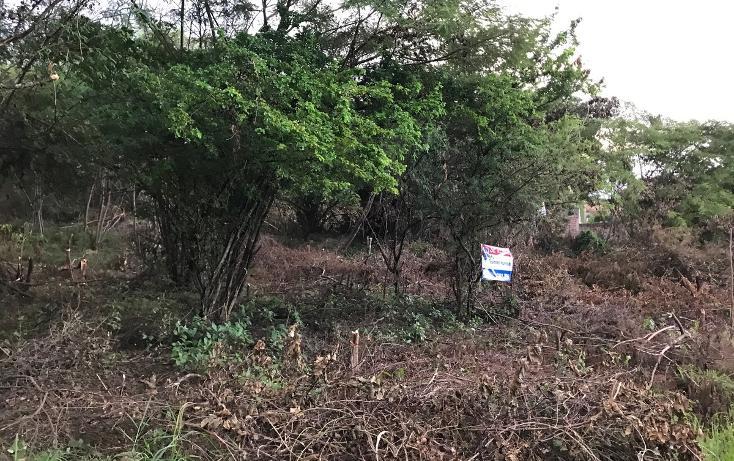 Foto de terreno habitacional en venta en, campestre arenal, tuxtla gutiérrez, chiapas, 1636224 no 06
