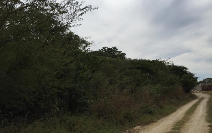Foto de terreno habitacional en venta en  , campestre arenal, tuxtla gutiérrez, chiapas, 1636224 No. 06