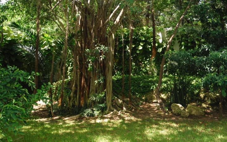 Foto de casa en venta en  , campestre, benito ju?rez, quintana roo, 1255545 No. 28