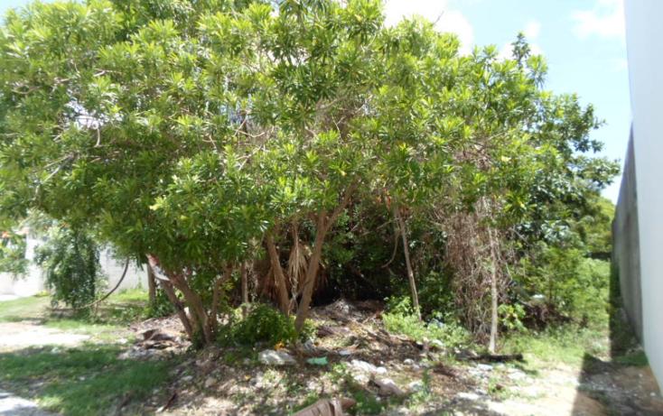Foto de terreno habitacional en venta en  , campestre, benito ju?rez, quintana roo, 1286023 No. 07