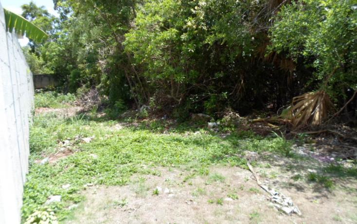 Foto de terreno habitacional en venta en  , campestre, benito ju?rez, quintana roo, 1286023 No. 08