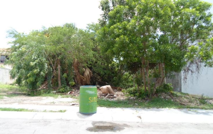 Foto de terreno habitacional en venta en  , campestre, benito ju?rez, quintana roo, 1286023 No. 10