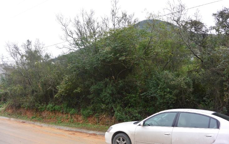 Foto de terreno habitacional en venta en  , campestre bugambilias, monterrey, nuevo león, 1253407 No. 04