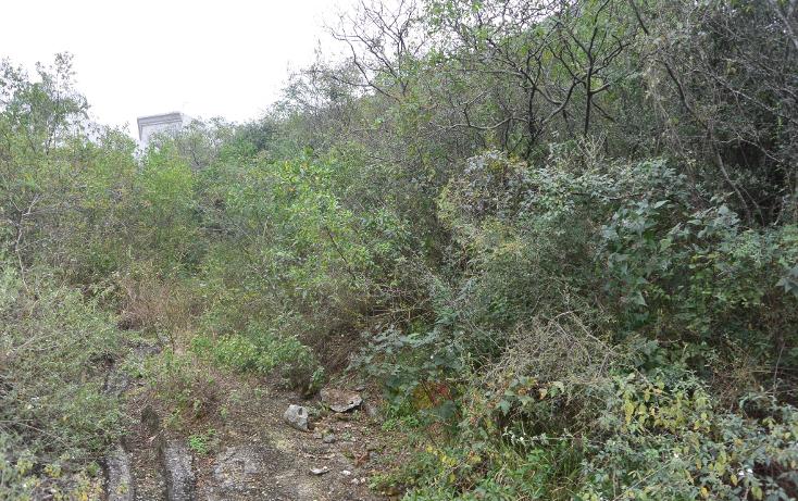 Foto de terreno habitacional en venta en  , campestre bugambilias, monterrey, nuevo león, 1253407 No. 06