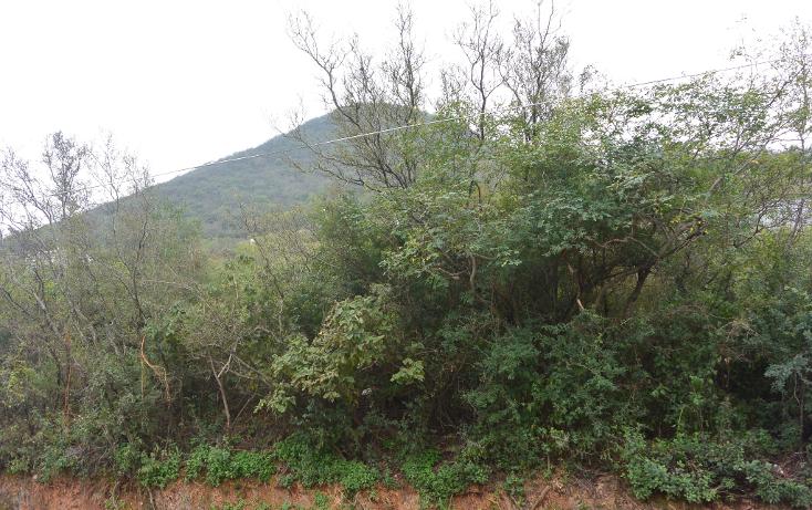 Foto de terreno habitacional en venta en  , campestre bugambilias, monterrey, nuevo león, 1253407 No. 07