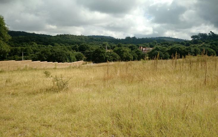 Foto de terreno habitacional en venta en  , campestre del bosque, puebla, puebla, 1357423 No. 03