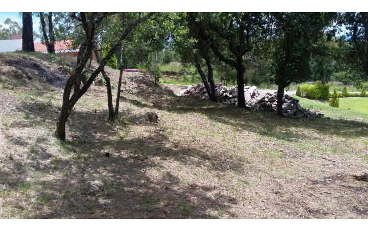 Foto de terreno habitacional en venta en  , campestre haras, amozoc, puebla, 1238041 No. 05