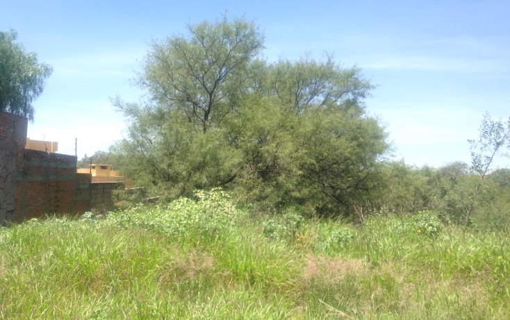 Foto de terreno habitacional en venta en  , campestre la herradura, aguascalientes, aguascalientes, 1132975 No. 04