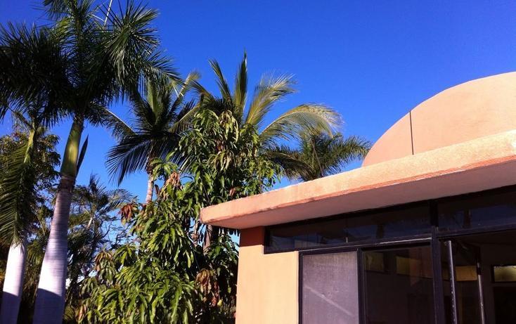 Foto de casa en venta en  , campestre, la paz, baja california sur, 1298563 No. 05