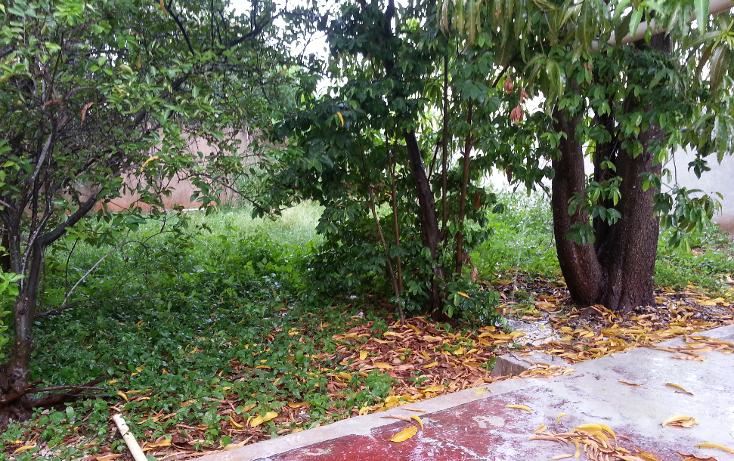 Foto de terreno comercial en renta en  , campestre, mérida, yucatán, 1099447 No. 10