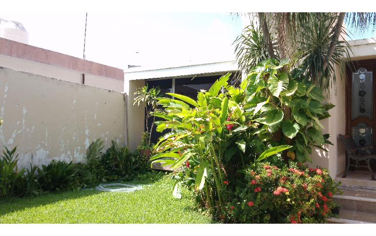 Foto de casa en venta en  , campestre, mérida, yucatán, 1269329 No. 12