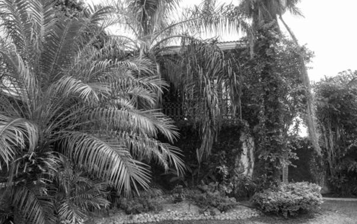 Foto de casa en venta en  , campestre, mérida, yucatán, 1506527 No. 23