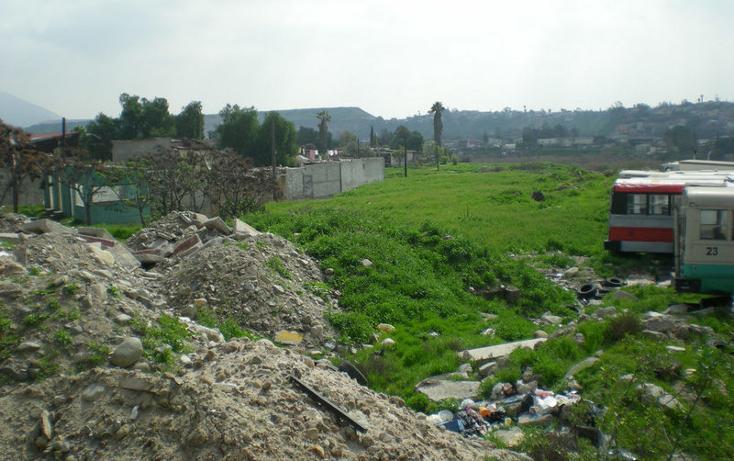 Foto de terreno comercial en venta en  , campestre murua, tijuana, baja california, 1191971 No. 04
