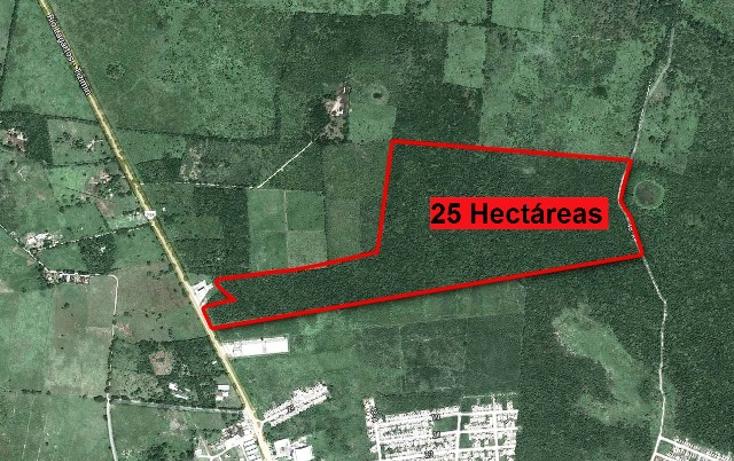 Foto de terreno comercial en venta en  , campestre san francisco, tizimín, yucatán, 1091293 No. 03