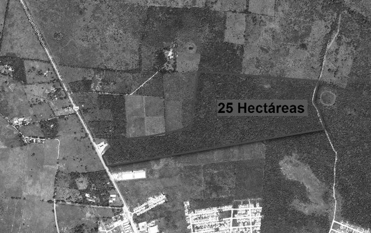 Foto de terreno habitacional en venta en  , campestre san francisco, tizimín, yucatán, 1553618 No. 02