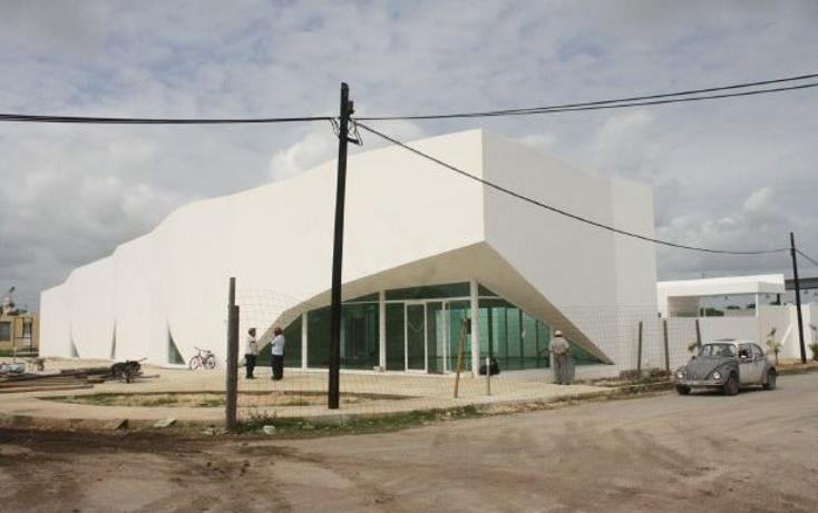 Foto de local en renta en  , campestre san francisco, tizim?n, yucat?n, 1667818 No. 05