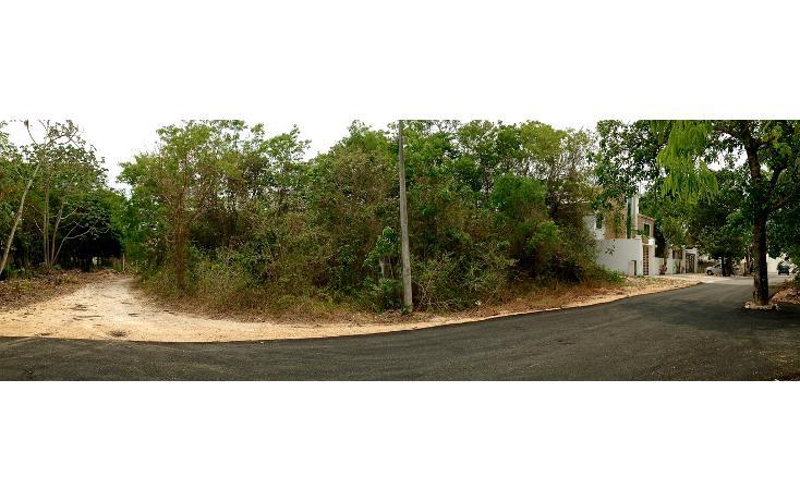 Foto de terreno habitacional en venta en  , campestre, solidaridad, quintana roo, 1252075 No. 04