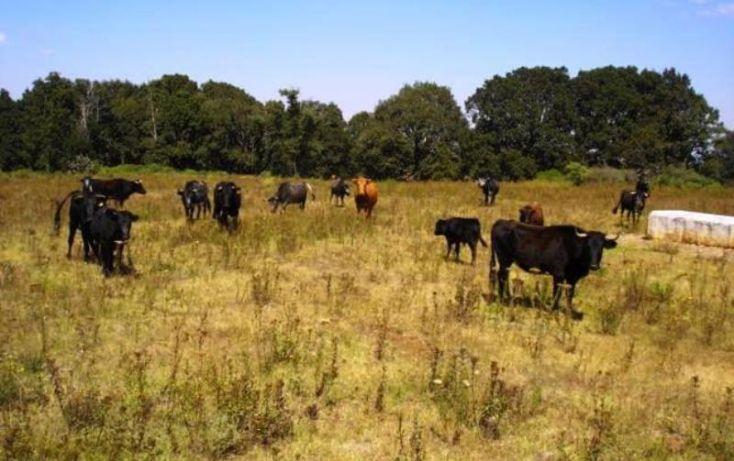 Foto de rancho en venta en campos eliseos 20, polanco v sección, miguel hidalgo, df, 1959932 no 11
