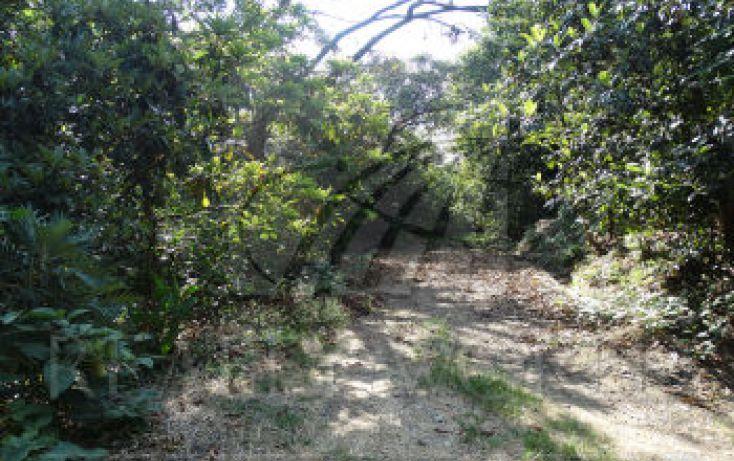 Foto de terreno habitacional en venta en, campos san martín, malinalco, estado de méxico, 1770536 no 02