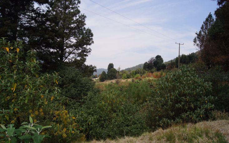 Foto de terreno habitacional en venta en, cañada de alférez, lerma, estado de méxico, 1873460 no 01