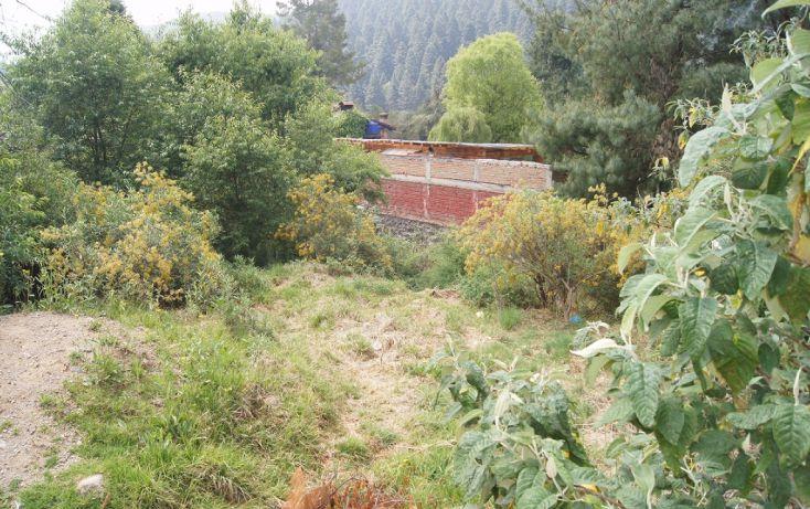 Foto de terreno habitacional en venta en, cañada de alférez, lerma, estado de méxico, 1873460 no 02