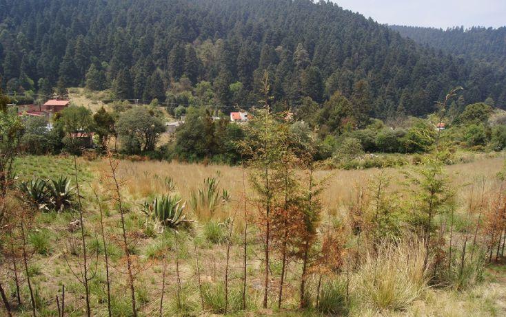 Foto de terreno habitacional en venta en, cañada de alférez, lerma, estado de méxico, 1873460 no 05