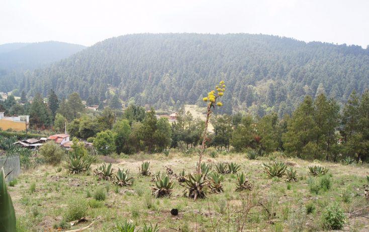 Foto de terreno habitacional en venta en, cañada de alférez, lerma, estado de méxico, 1934762 no 03