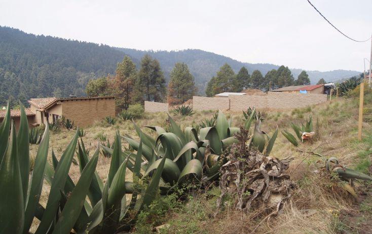 Foto de terreno habitacional en venta en, cañada de alférez, lerma, estado de méxico, 1939830 no 01