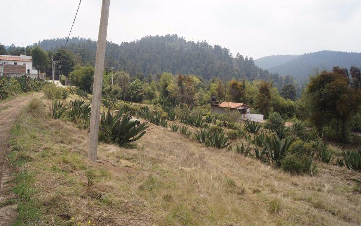 Foto de terreno habitacional en venta en, cañada de alférez, lerma, estado de méxico, 1939830 no 02