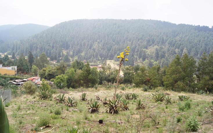 Foto de terreno habitacional en venta en  , cañada de alférez, lerma, méxico, 1934762 No. 03