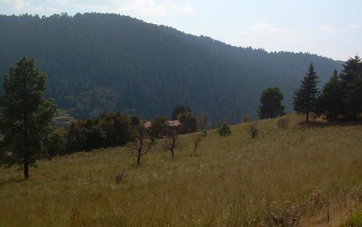 Foto de terreno habitacional en venta en  , cañada de alférez, lerma, méxico, 481992 No. 02