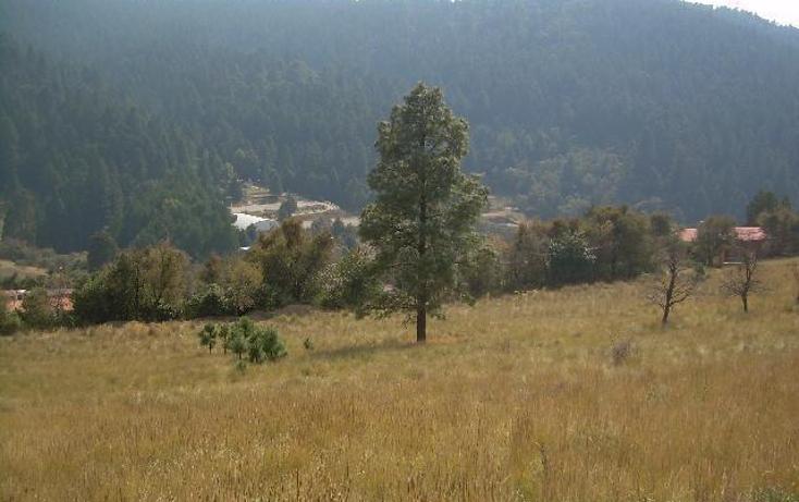 Foto de terreno habitacional en venta en  , cañada de alférez, lerma, méxico, 481992 No. 05