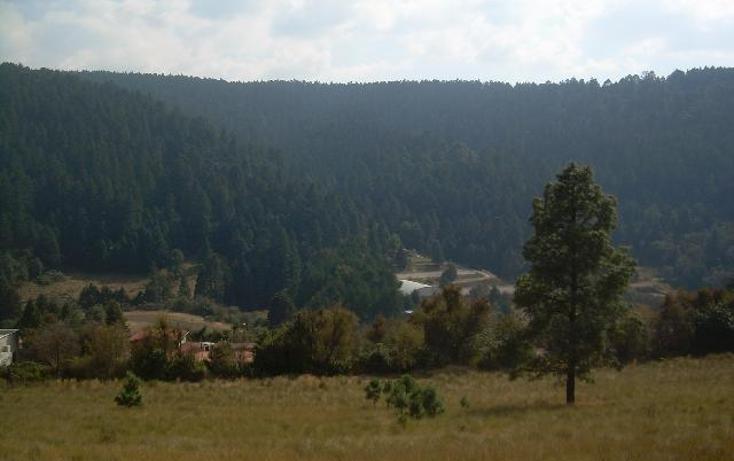Foto de terreno habitacional en venta en  , cañada de alférez, lerma, méxico, 481992 No. 07