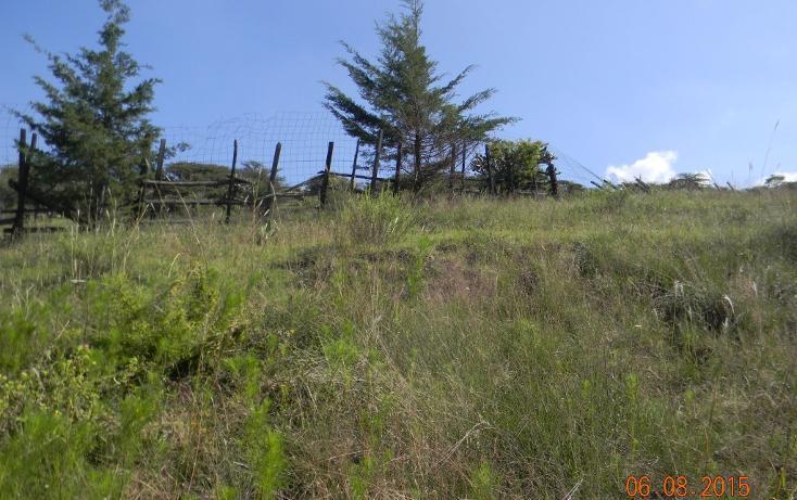 Foto de terreno habitacional en venta en  , cañada de cisneros, tepotzotlán, méxico, 1708772 No. 05