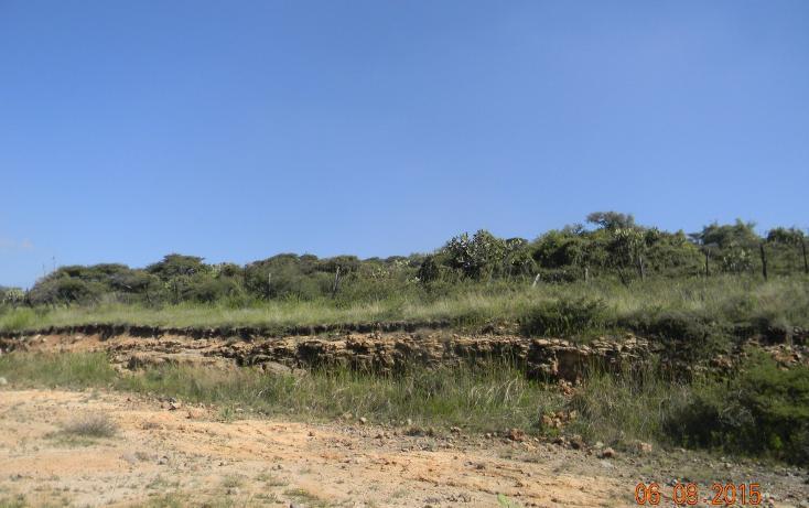 Foto de terreno habitacional en venta en  , cañada de cisneros, tepotzotlán, méxico, 1708772 No. 09