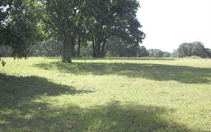 Foto de terreno habitacional en venta en  , ca?ada de cisneros, tepotzotl?n, m?xico, 1958481 No. 01