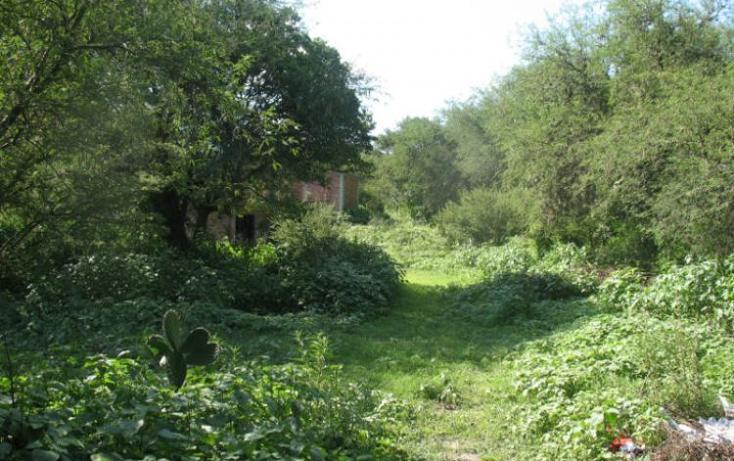 Foto de terreno habitacional en venta en  , cañada de madero, tepeji del río de ocampo, hidalgo, 1657653 No. 05