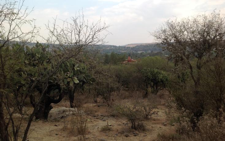 Foto de terreno habitacional en venta en  , cañada de madero, tepeji del río de ocampo, hidalgo, 1657653 No. 08