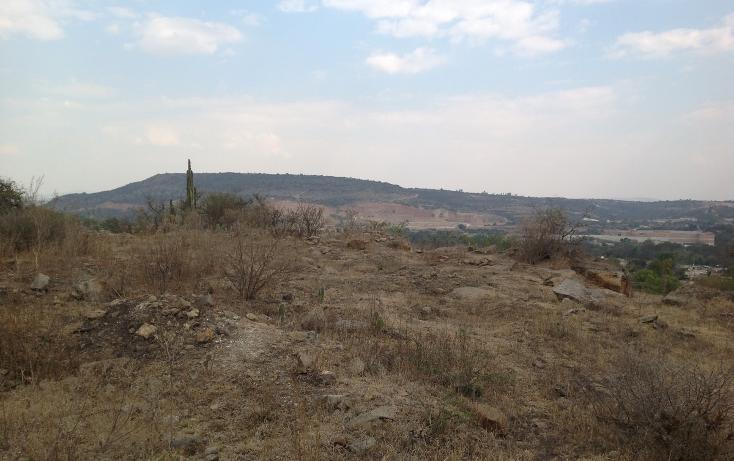 Foto de terreno habitacional en venta en  , cañada de madero, tepeji del río de ocampo, hidalgo, 1657653 No. 14