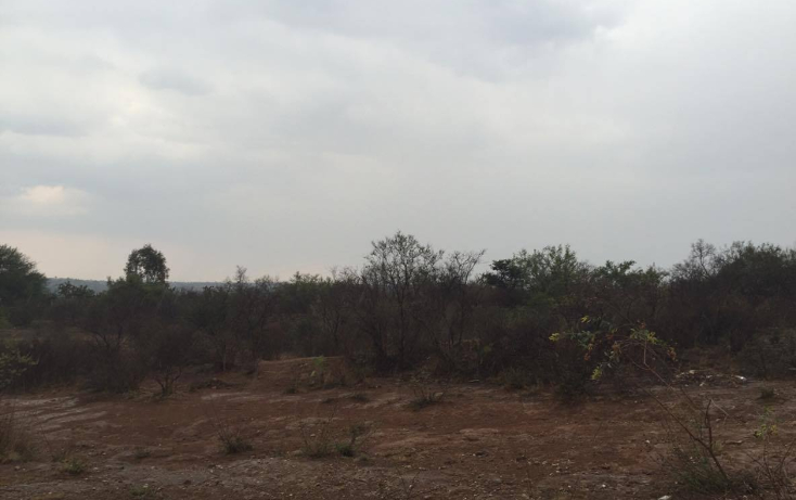 Foto de terreno comercial en venta en  , ca?ada grande de cotorina, aguascalientes, aguascalientes, 2045012 No. 04