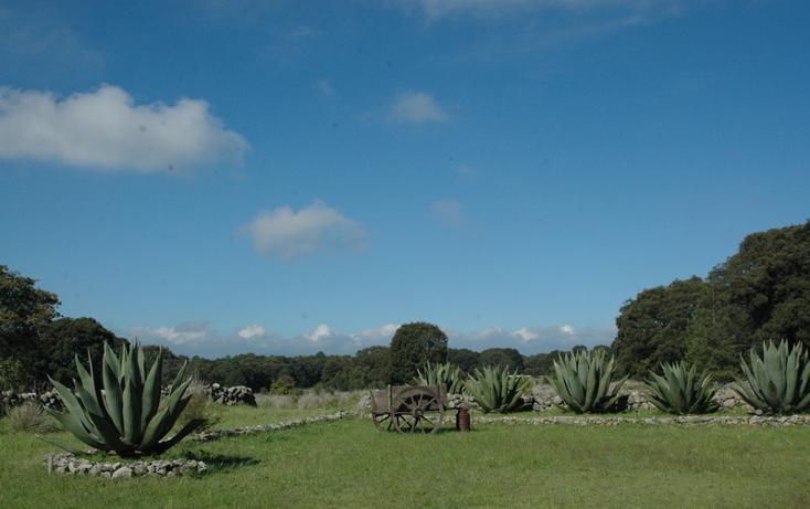 Foto de casa en venta en  , canalejas, jilotepec, méxico, 2728438 No. 03