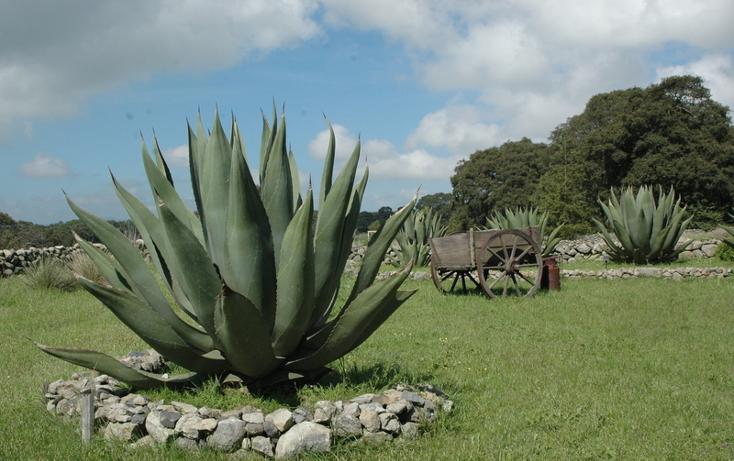Foto de casa en venta en  , canalejas, jilotepec, méxico, 2728438 No. 09