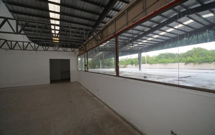 Foto de nave industrial en venta en  , cancún centro, benito juárez, quintana roo, 1054127 No. 07