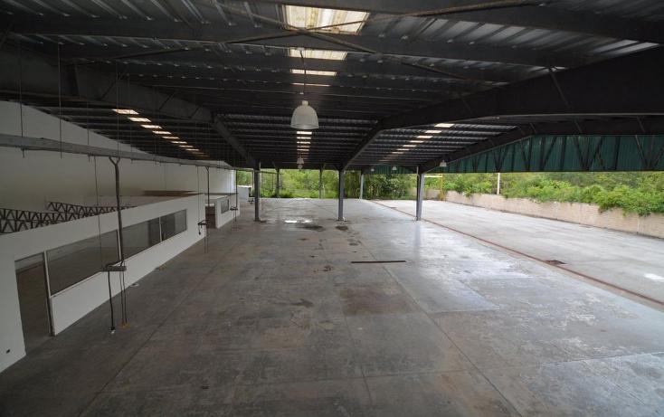 Foto de nave industrial en venta en  , cancún centro, benito juárez, quintana roo, 1054127 No. 22