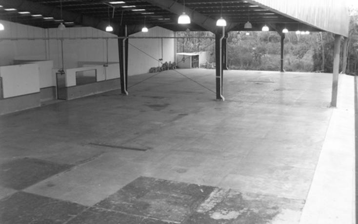 Foto de edificio en venta en  , cancún centro, benito juárez, quintana roo, 1065695 No. 04