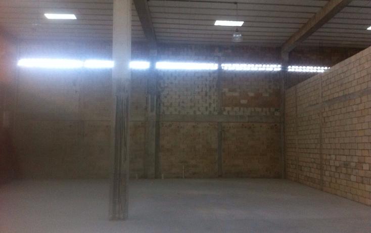 Foto de local en renta en  , cancún centro, benito juárez, quintana roo, 1100305 No. 04