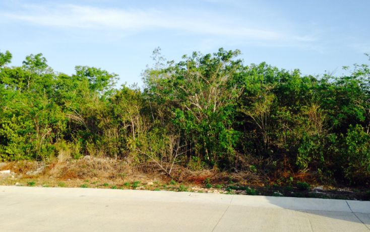 Foto de terreno comercial en venta en, cancún centro, benito juárez, quintana roo, 1162499 no 02