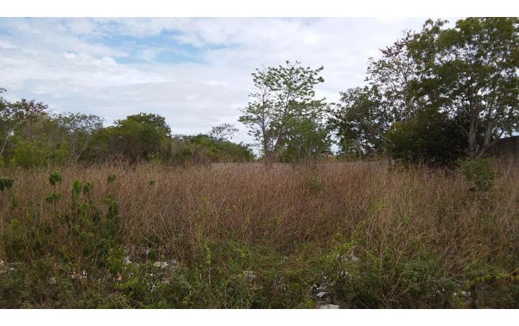 Foto de terreno comercial en venta en  , cancún centro, benito juárez, quintana roo, 1205103 No. 01