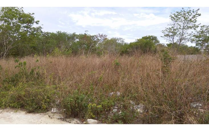 Foto de terreno comercial en venta en  , cancún centro, benito juárez, quintana roo, 1205103 No. 02